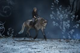nhupin-chevaux--21