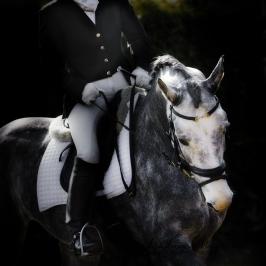 nhupin-chevaux--24