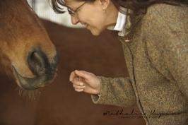 nhupin-chevaux-3013