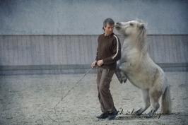 nhupin-chevaux--50