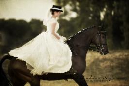 nhupin-chevaux--63