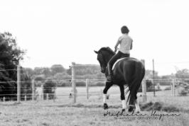 nhupin-chevaux--8
