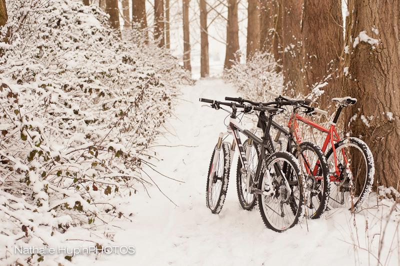 mountainbike-1851