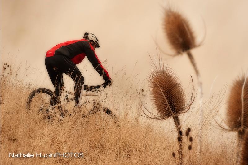 mountainbike-3