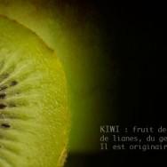 fiche kiwi
