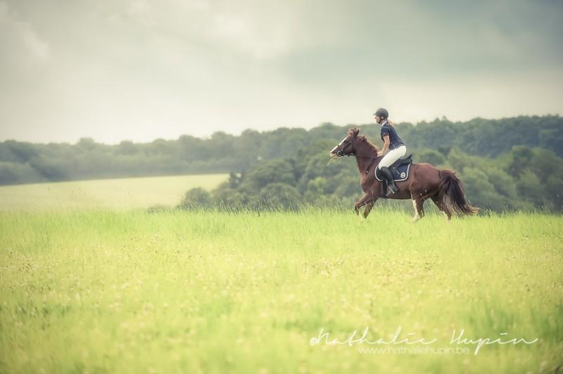 Galop dans les champs